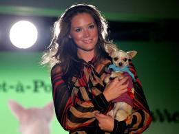 Модата за кучета се глобализира